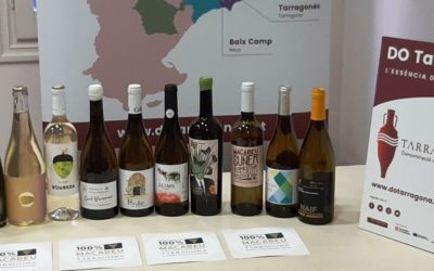 La DO Tarragona apadrina la varietat macabeu per posicionar-la amb força i prestigi davant del consumidor català